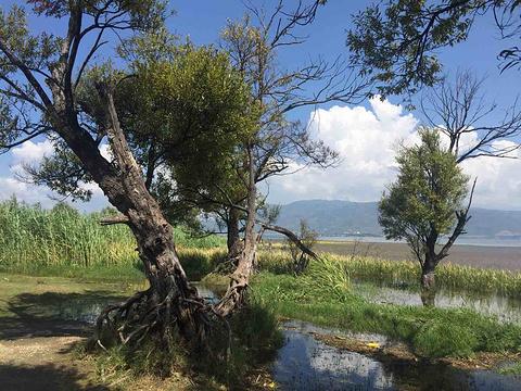 海舌生态公园旅游景点攻略图