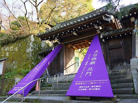 长乐寺旅游景点图片