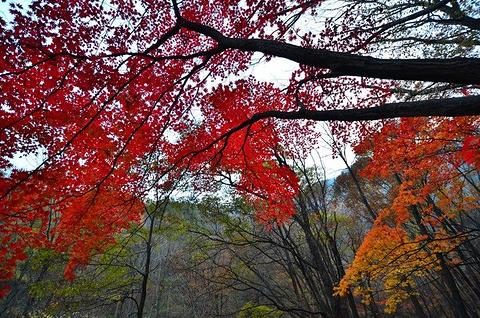 关门山景区旅游景点攻略图