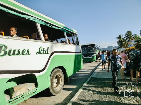 丹娜努岛旅游景点攻略图