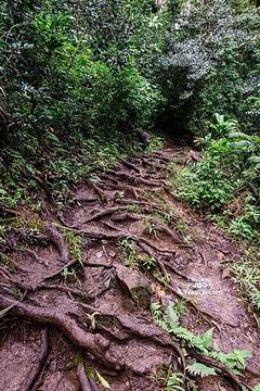 瓦伊卡莫伊自然小径旅游景点攻略图