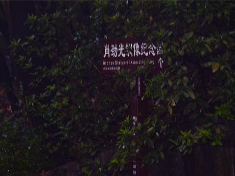 肖劲光铜像纪念园旅游景点图片
