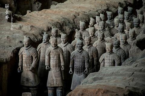 秦始皇兵马俑博物馆的图片