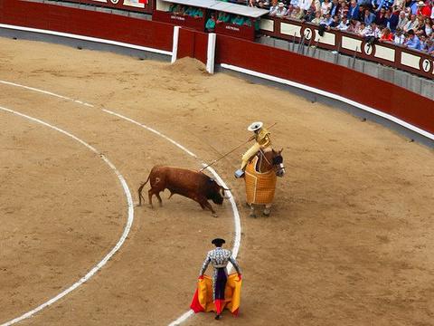 拉斯班塔斯斗牛场旅游景点图片