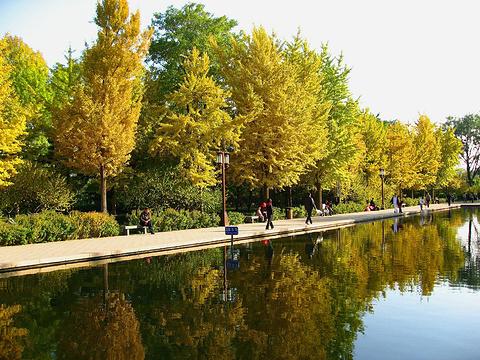 玲珑公园旅游景点图片