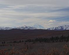 """用""""♥""""去猎捕天边那一抹绿。阿拉斯加之旅"""
