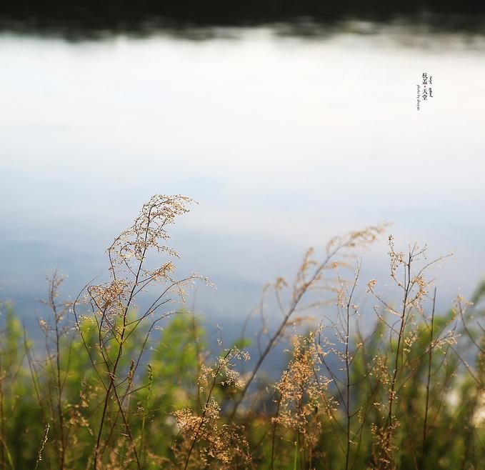 临江屯图片