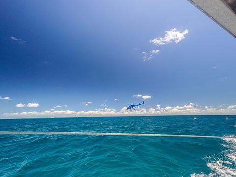 阿金考特大堡礁