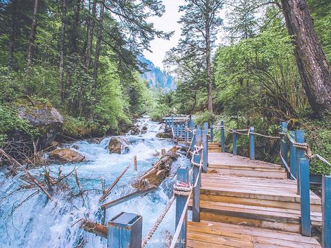 白马王朗国家级自然景区旅游景点图片