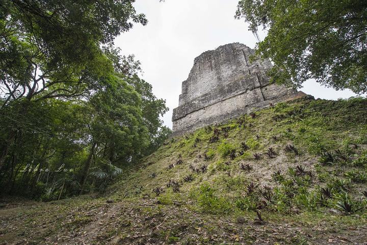"""""""目前开发出来的游览区不大,和吴哥窟很像,步行足矣。_蒂卡尔古迹""""的评论图片"""