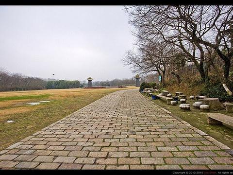 淹城遗址公园旅游景点图片