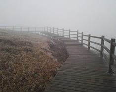 大山包中迷雾浓