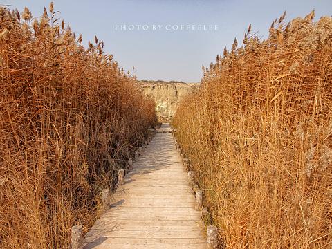 宁夏水洞沟旅游区旅游景点图片