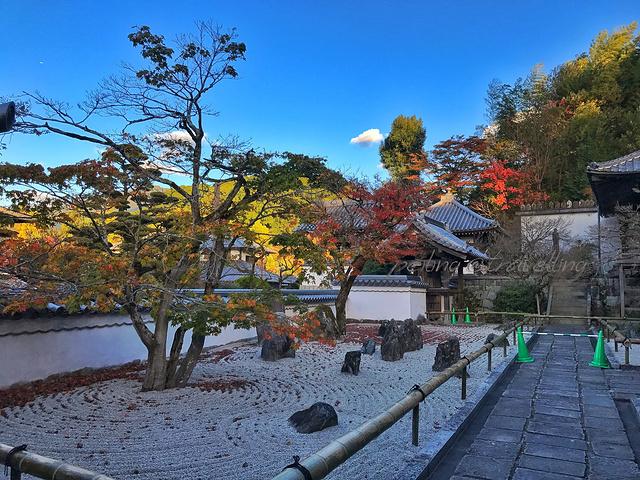 """""""这些庭院别具情趣, 十分有名_光明禅寺""""的评论图片"""