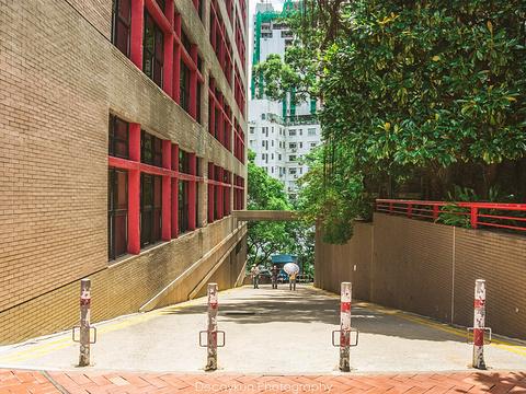 香港大学旅游景点图片