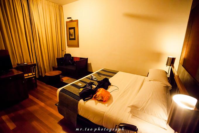 丹布拉坎达拉马遗产酒店(Heritance Kandalama Dambulla)图片