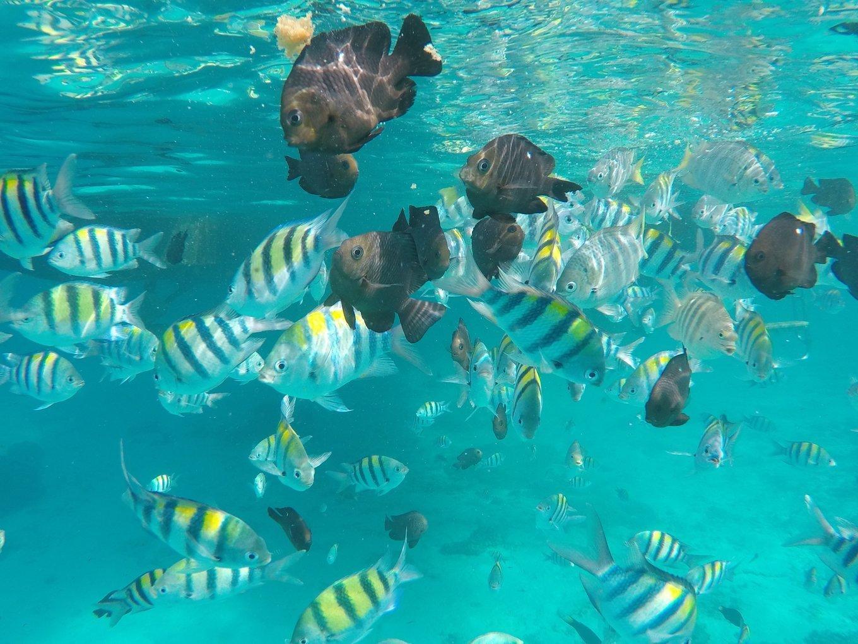 普吉岛,安达曼海上的明珠