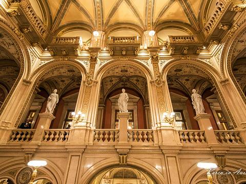 维也纳国家歌剧院旅游景点图片