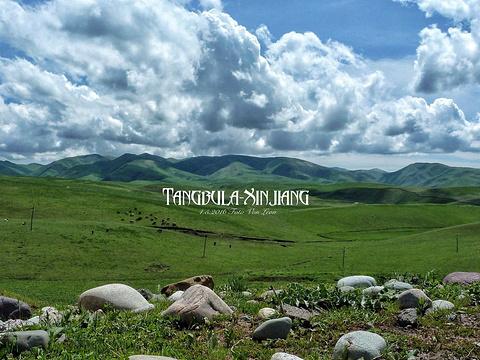 唐布拉草原旅游景点图片