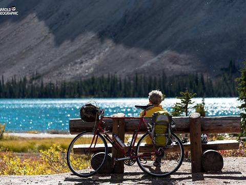 弓湖旅游景点图片