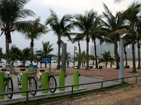 金沙湾海滨浴场旅游景点图片