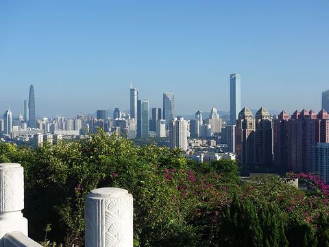 莲花山公园旅游景点图片