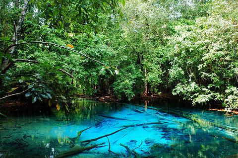 翡翠池(SRA莫拉克)旅游景点攻略图
