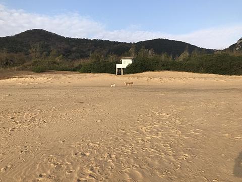 千步沙旅游景点攻略图