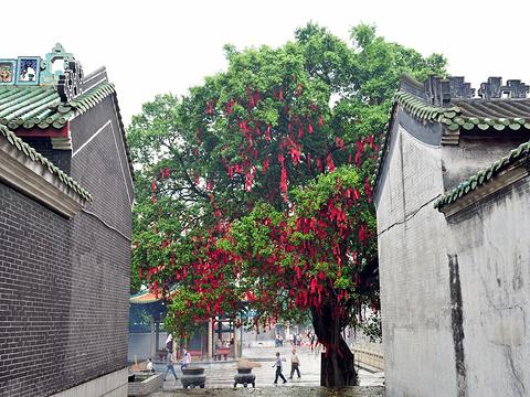 悦城龙母祖庙 (龙母庙)旅游景点图片