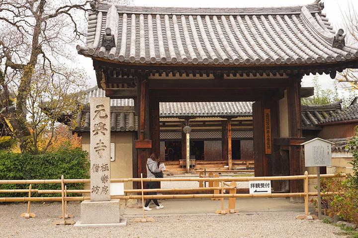 """""""走进寺庙后,发现一个大殿里很多穿着传统服..._元兴寺""""的评论图片"""