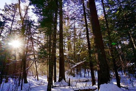 长白山地下森林旅游景点攻略图