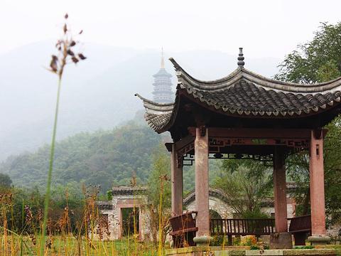天童寺旅游景点图片