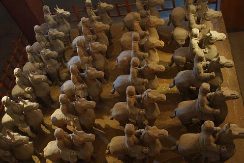 汉兵马俑博物馆的图片
