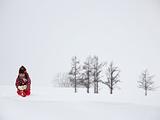 北海道旅游景点攻略图片