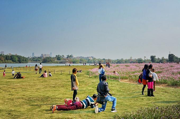 海珠湿地公园图片
