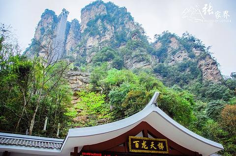 百龙天梯旅游景点攻略图