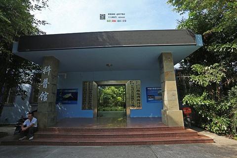 海龟自然保护区