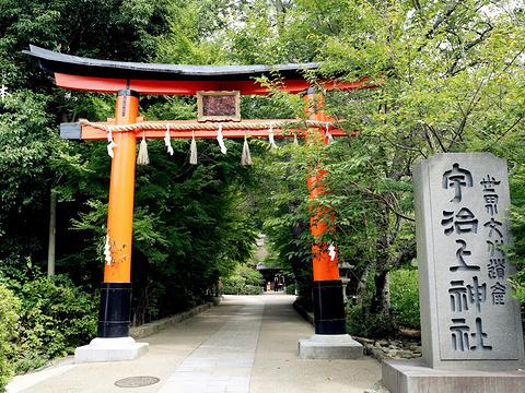 宇治上神社旅游景点图片