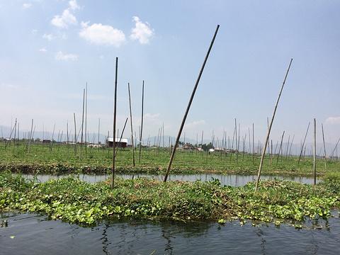 茵莱湖旅游景点图片