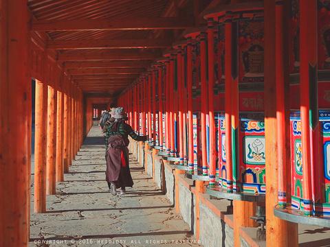 拉卜楞寺旅游景点图片
