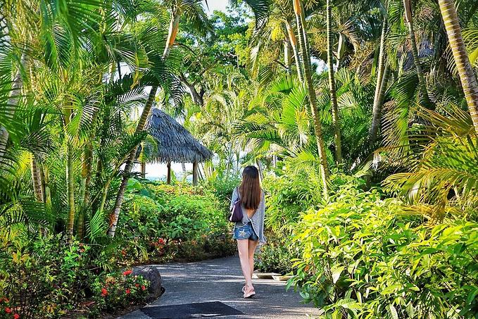 索菲特斐济温泉度假酒店(Sofitel Fiji Resort & Spa)图片