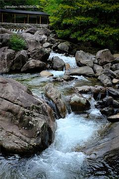 天目大峡谷旅游景点攻略图