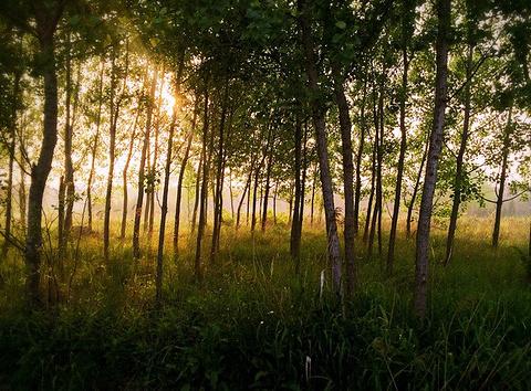 日照万平口海滨风景区