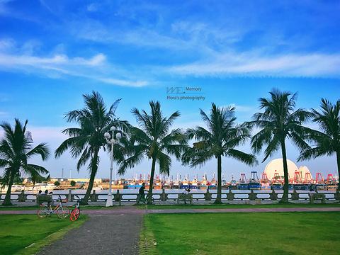 海滨公园的图片