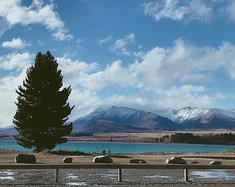 原生态新西兰亲子游