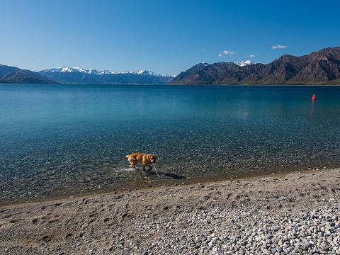 哈威亚湖旅游景点图片