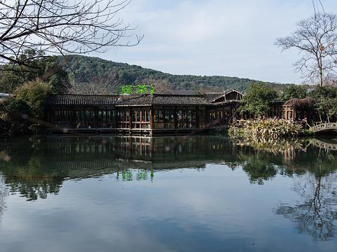 绿茶餐厅(龙井路店)旅游景点图片