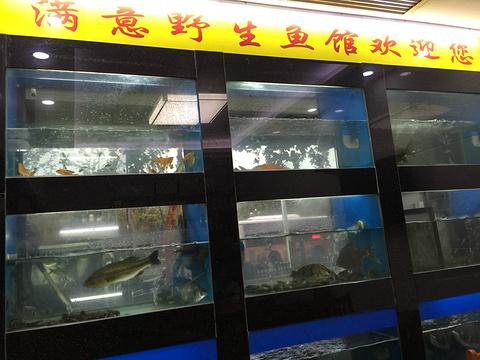 满意野生鱼馆旅游景点攻略图
