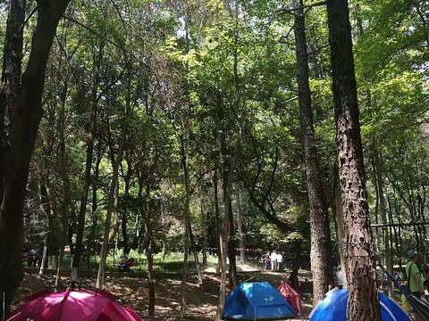 九峰国家森林公园旅游景点图片