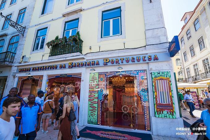 葡萄牙沙丁鱼的奇幻世界图片